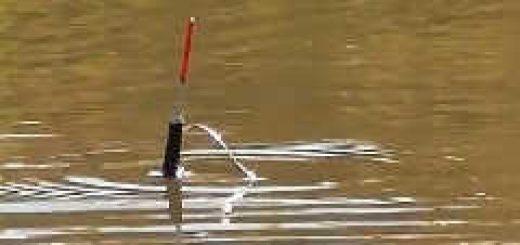 за карасями ЗИМОЙ на поплавок С ЧЕСНОКОМ
