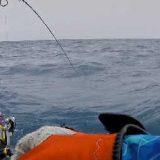 Морская рыбалка на Сейшелах