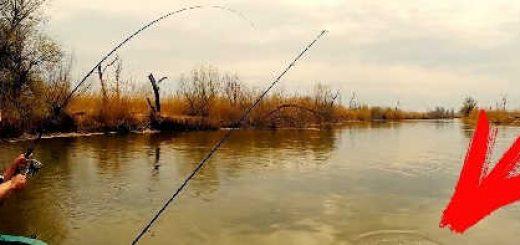 Рыбалка и отдых в Астрахани от А до Я