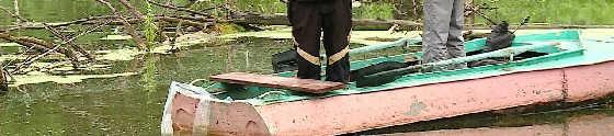Рыбалка в корягах
