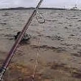 Трудовая рыбалка на водохранилище