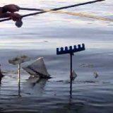 Ловля на течении на болонскую удочку