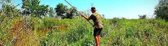 Рыбалка на карася и сома