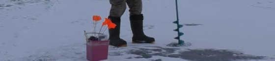 Ловля белой рыбы на засолку