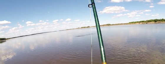 Рыбалка на Амуре: Краснопёрка, Толстолоб, Сом