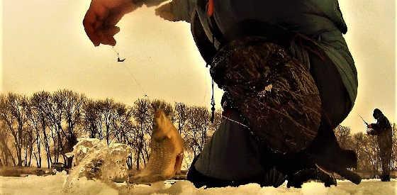 Зимняя РЫБАЛКА на хитрого КАРАСЯ