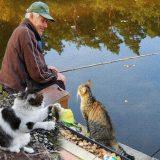 На рыбалку с котом