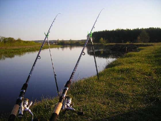 Ловля фидером на реке для начинающих