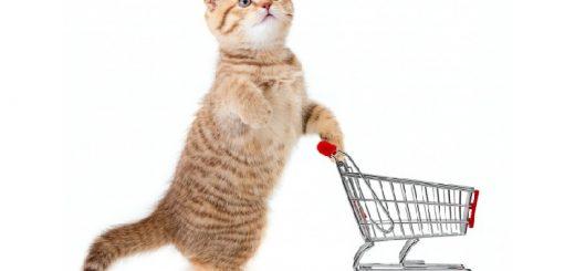 Товары для котов