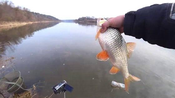 Рыбалка на Болонскую Снасть 2020