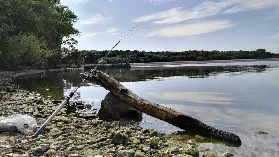 Фидерная рыбалка в Беларуси