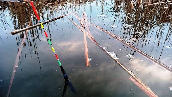 Каша для ловли карася на поплавок весной в марте