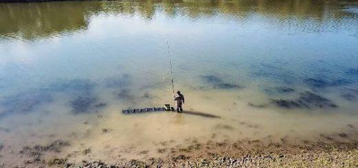 Карась на поплавок в мелководном затоне