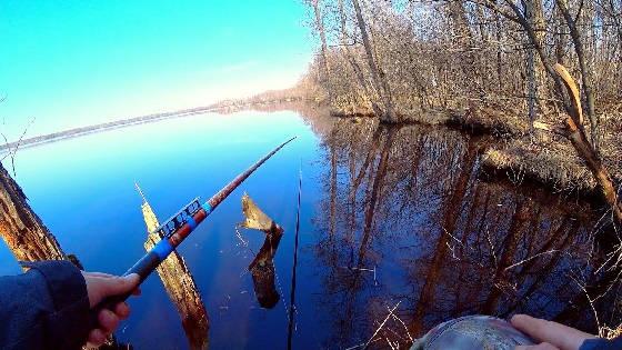 Рыбалка на торфяном диком озере среди лесных ручьёв