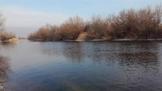 Поиск весеннего хищника по рекам Астраханской области
