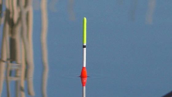 Трудовая рыбалка на поплавок в марте