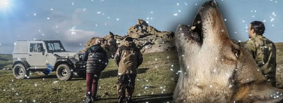Охота на волка в Дагестане: Выстрел на 240 метров