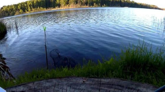 Фидерная ловля на озере