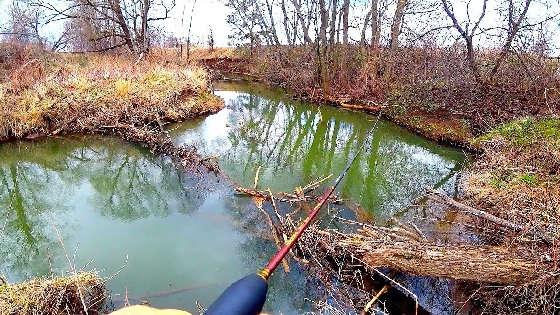 Поиск голавля на микро-речке весной