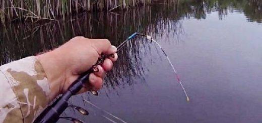 Как найти рыбу на боковой кивок весной