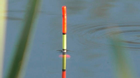 Как правильно огрузить поплавок под разные условия ловли?