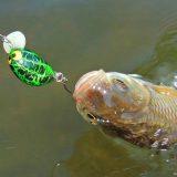 Поведение рыбы в Апреле