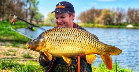 Рыбалка на коротких сессиях