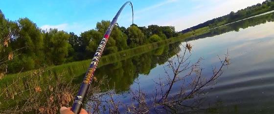 Ловля сазанов боковым кивком сазанов на реке Южный Буг