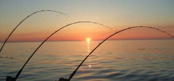 УЛОВИСТАЯ ВЕСЕННЯЯ каша для рыбалки на пружину, боковой кивок и поплавочную удочку