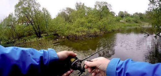 Как ловить щуку в траве, ряске и кувшинках?