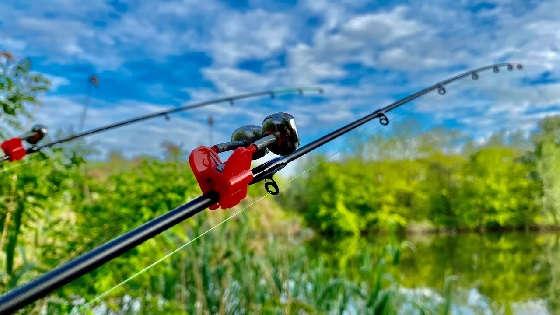 Рыбалка на ДНЕПРЕ на ФИДЕР