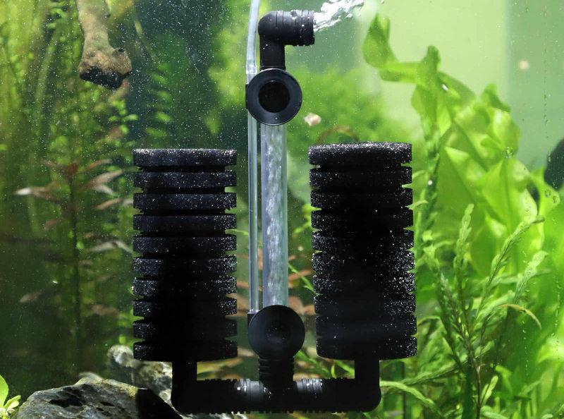 Аквариумный фильтр отвечает за очистку воды от загрязнений и микроорганизмов
