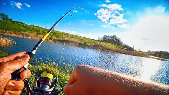 Рыбалка на торфяном карьере