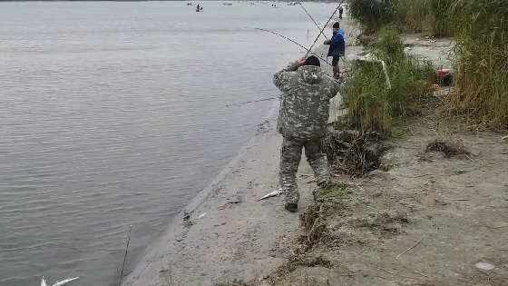 Рыбалка на Дону в Рогожкино