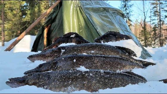 Рыбалка со льда на ламбине