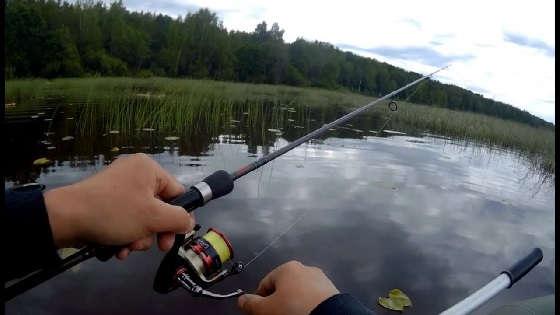 Твичинг на Диком Озере