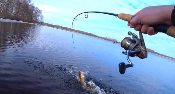 Рыбалка весной на спиннинг с берега