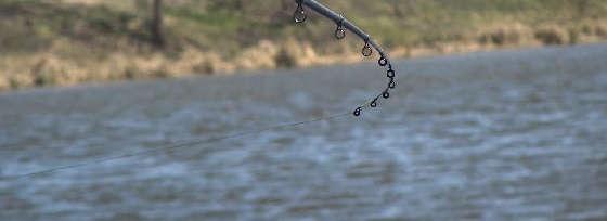 О ловле в забродку и микроджиге