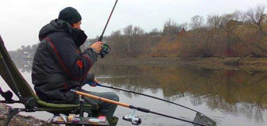 Ловля плотвы фидером на Москве-реке