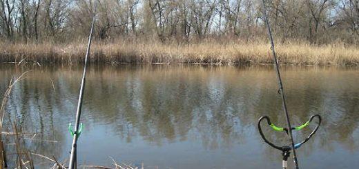 Легкий фидер на малой реке