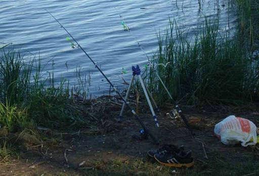 Фидерная ловля на водохранилище