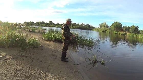 Фидерная ловля на реке Припять