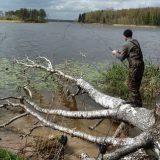 Рыбалка на трофейного карпа и амура в корягах