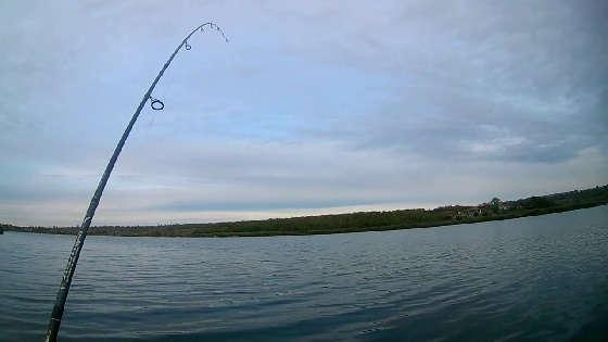 Рыбалка на хищника
