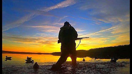 охота на утку с чучелами осенью 2019