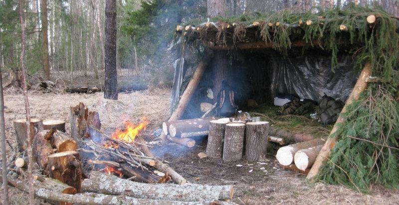 Отдых с ночевкой в лесу