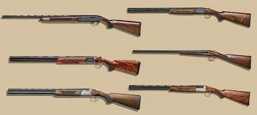 двуствольное ружьё или полуавтомат?