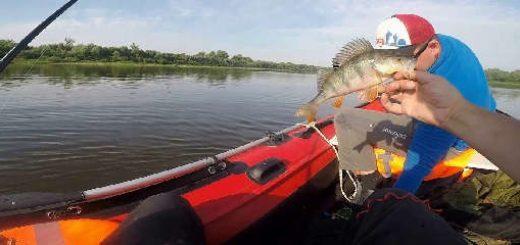 азартная спиннинговая рыбалка