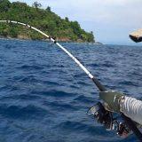 Что ловится на спиннинг в Тихом океане?