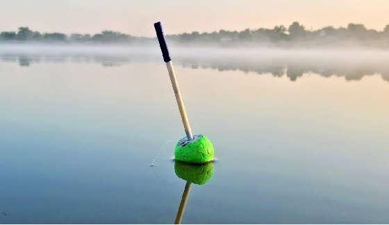 Ловля толстолобика на поплавок летом